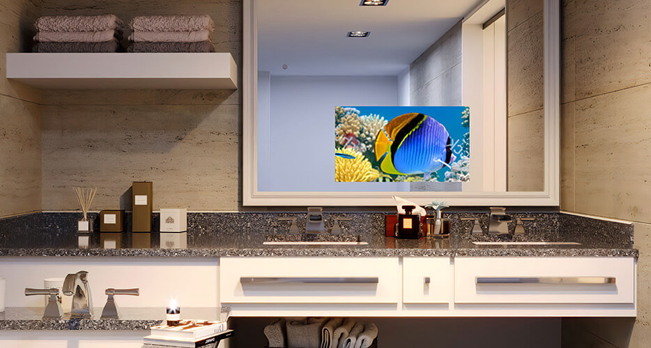 MirrorVue Mirror TV